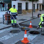 El Ayuntamiento concluye un plan de desinsectación y desratización en toda la red de alcantarillado y centros educativos
