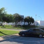 El Ayuntamiento activa el plan especial  de servicios con motivo de la Festividad de Todos los Santos