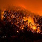La política forestal y el deterioro climático, factores clave en los incendios de Galicia, Asturias, León y Portugal según Ecologistas en Acción