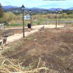 El Ayuntamiento inicia los trabajos para crear un parque canino en La Cala
