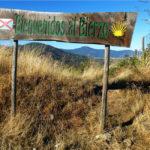 La D.O. Bierzo presenta en Málaga sus vinos más representativos