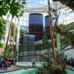 El Parque Botánico-Orquidario será la primera sede española del Consejo Europeo de la Orquídea