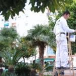 El Ayuntamiento realiza más de 300 actuaciones de mejora en la ciudad con la campaña '12 meses, 12 barrios'