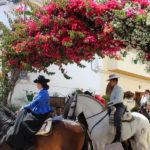 Estepona contará con un dispositivo especial de seguridad y limpieza con motivo de  las fiestas patronales de San Isidro