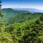 Estepona intensifica los controles en parajes naturales para evitar incendios forestales