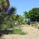 El Ayuntamiento inicia los trabajos para recuperar un acueducto del siglo XIX en la playa del Ángel