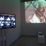 """Abierta la Exposición """"María Zambrano y el método de los claros. Cuaderno de notas para un ensayo en imágenes"""""""